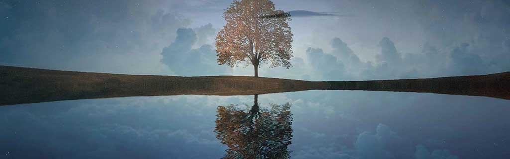 Ruhebild_Baum, Bild zu Kurs Innere Ruhe finden
