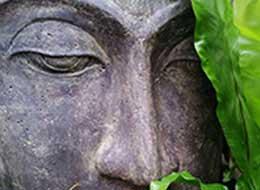 online-workshops_ankerbild, grüner buddha